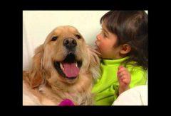 Baby Einstein Baby Dolittle – Animales de nuestra vecindad- Parte 1