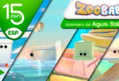 Zoobabu | Colección 18 -Animales de Agua Salada