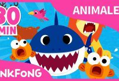Las mejores canciones de animales / Pinkfong Canciones infantiles