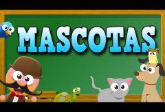 Mascotas en inglés – Inglés para niñas y niños con Mr. Pea